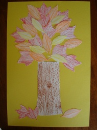 Tree Rubbings Collage